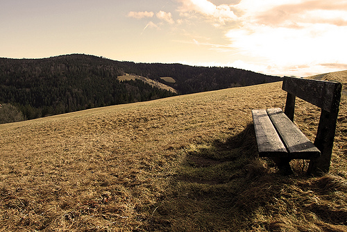 peaceful seat